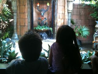 MK day- At Tiki Room